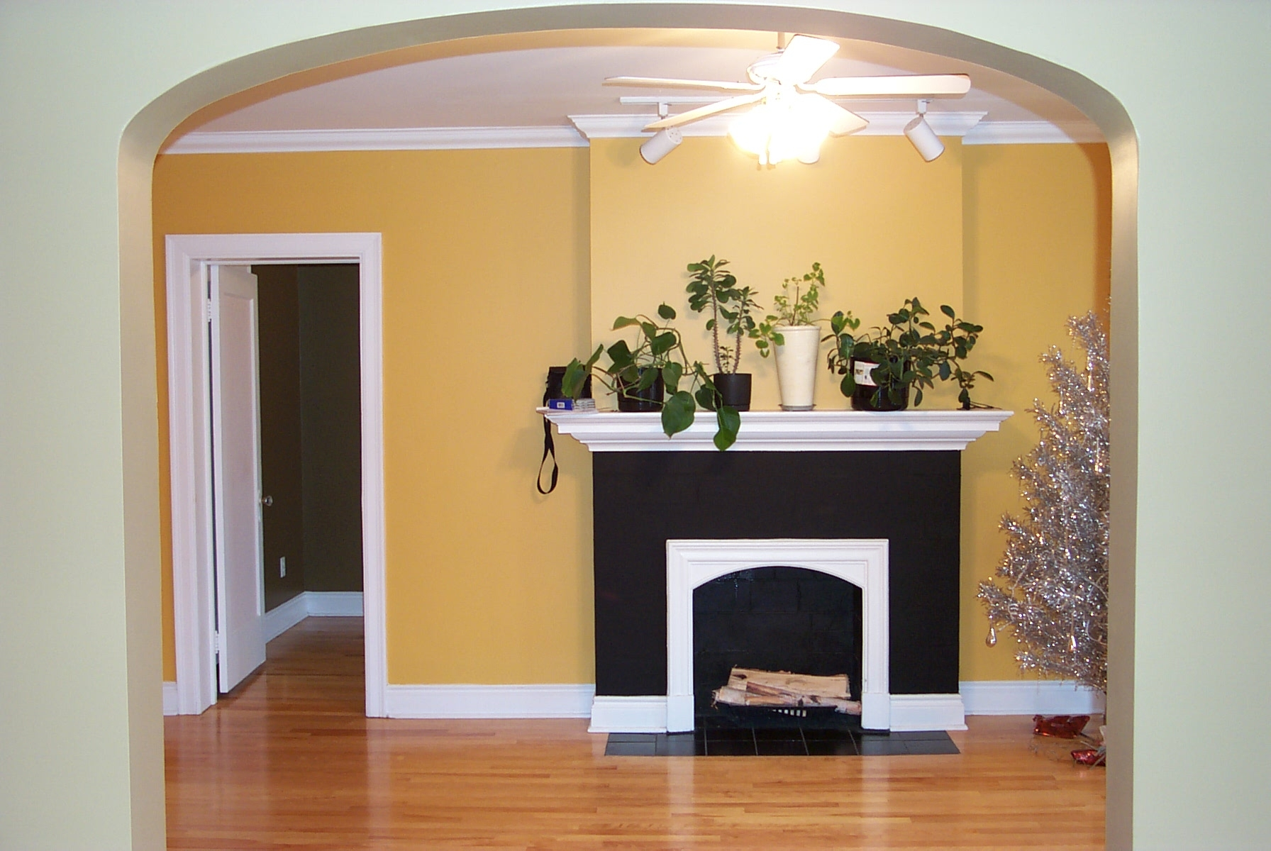 Best interior house paint colors for What color to paint house